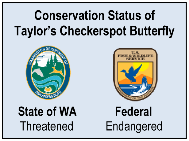 Taylor's Checkerspot Status 2013