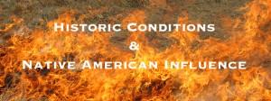 Burn banner title1