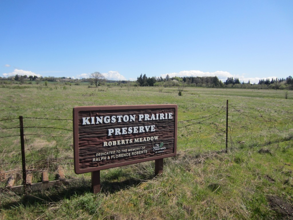 Kinston Prairie