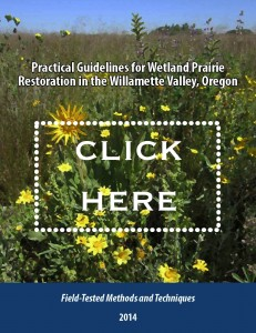 Wetland Restoration: a practical guide (PDF)