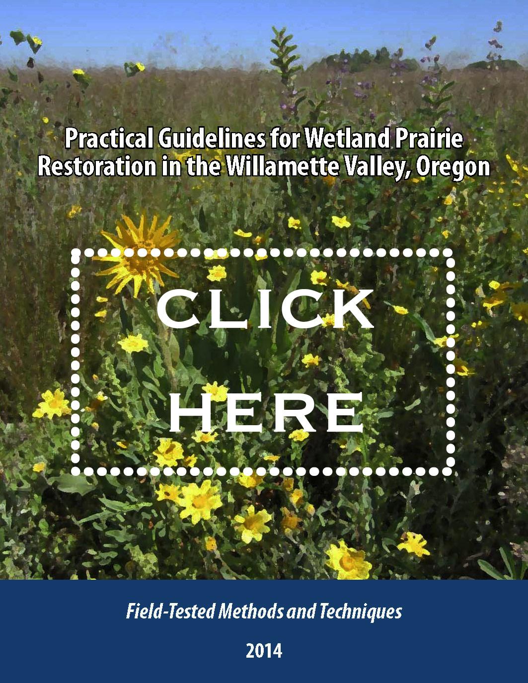 Wetland Prairie Guide (PDF)